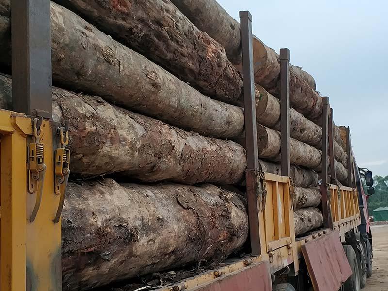 建筑木模板尺寸规格都有哪几种